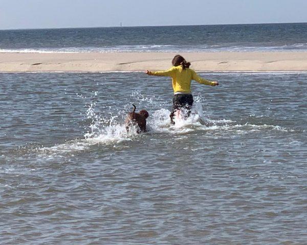 Otis-kennel-puppies-te-koop-in-water
